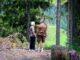To gamle mennesker står i naturen på deres rejse