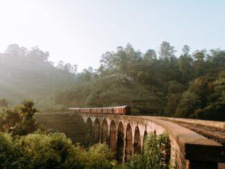 Smuk bro over natur i Sri Lanka